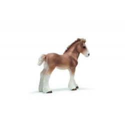 puledro clydesdale