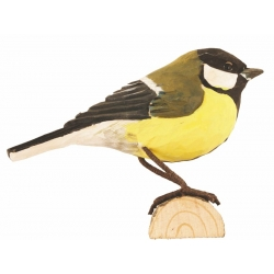 great tit - cinciallegra