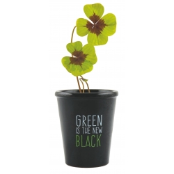 green is the new black (6)